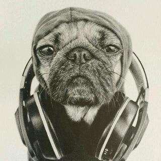 Iboro profile picture
