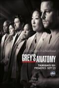 Grey's Anatomy Season 7 (Complete)