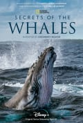 Secrets of the Whales Season 1 (Complete)