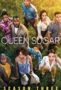 Queen Sugar Season 3 (Complete)