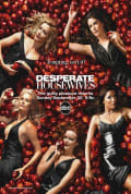 Desperate Housewives Season 2 (Complete)