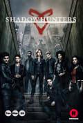 Shadowhunters Season 3 (Complete)