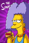 The Simpsons Season 27 (Complete)