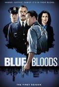 Blue Bloods Season 1 (Complete)