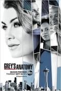 Grey's Anatomy Season 14 (Complete)