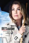 Grey's Anatomy Season 12 (Complete)
