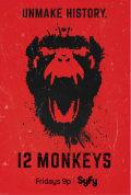 12 Monkeys Season 1 (Complete)