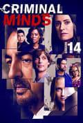 Criminal Minds Season 14 (Complete)