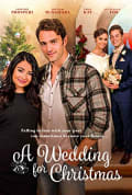 Watch A Wedding for Christmas Full HD Free Online