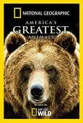 Watch America's Greatest Animals Full HD Free Online