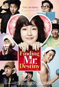 Watch Finding Mr. Destiny Full HD Free Online