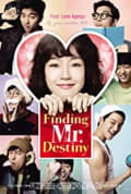 Finding Mr. Destiny (2010)