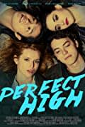 Perfect High (2015)