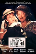 Watch The Trip to Bountiful Full HD Free Online