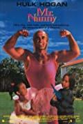 Mr. Nanny (1993)