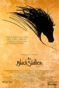 Watch The Black Stallion Full HD Free Online