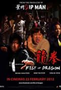 Fist of Dragon (2011)