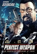 Watch The Perfect Weapon Full HD Free Online