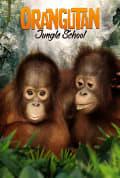Orangutan Jungle School Season 1 (Complete)