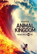 Watch Animal Kingdom Full HD Free Online