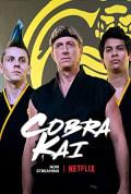 Watch Cobra Kai Full HD Free Online