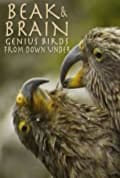 Beak & Brain - Genius Birds from Down Under (2013)