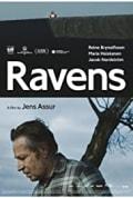 Ravens (2017)