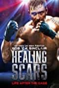 Healing Scars (2018)