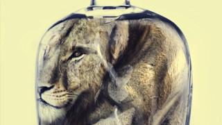 Poster bảo vệ động vật gây ấn tượng mạnh của WWF
