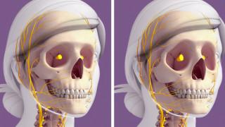 Cơ thể của chúng ta thay đổi như thế nào sau 30, và tại sao khuôn mặt của chúng ta có thể già đi