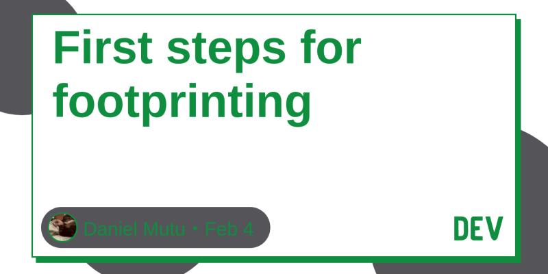 First steps for footprinting - DEV Community 👩 💻👨 💻