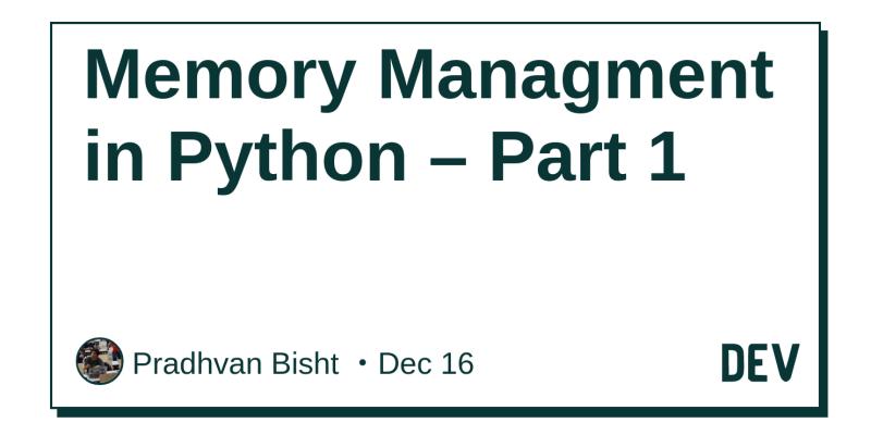 Memory Managment in Python – Part 1 - DEV Community 👩 💻👨 💻