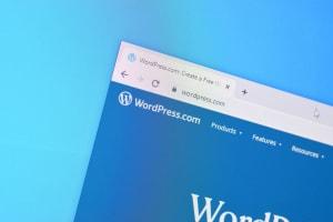 usa wordpress
