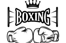 Siaran Langsung Boxing