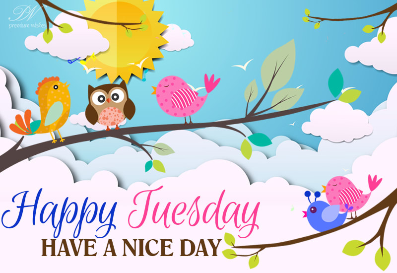 Happy Tuesday - Have a nice day with joyous moments - Premium Wishes