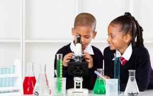 Junior Secondary Science Tutor