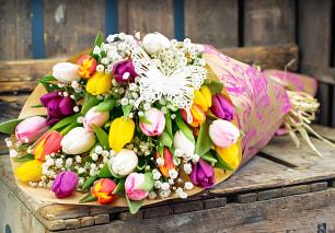 British Tulips