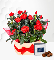 Valentine's Heart Rose Box