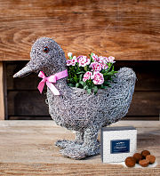 Daisy Duck Planter