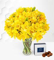 Spring British Daffodils