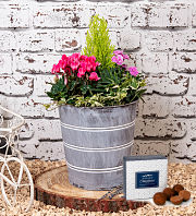 Outdoor Mix Planter