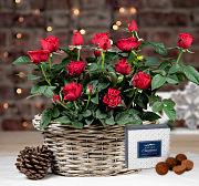 Christmas Rose Basket