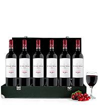 Connoisseur's Wine Case