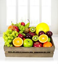 Fruit Galore