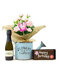 Brilliant Birthday