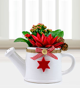 Christmas Joyful Jug