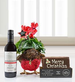 Holiday Robin Gift