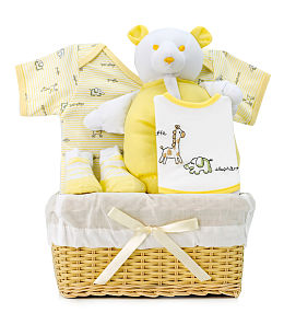 Yellow Baby Basket