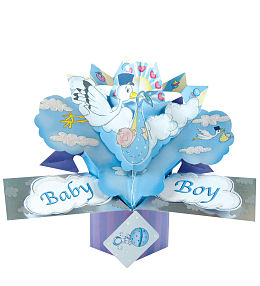Baby Boy Pop Card