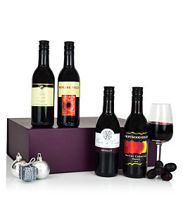 Explorers Wine Case